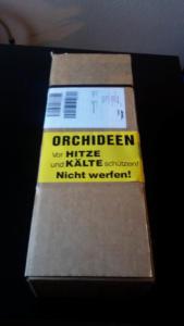 Orchideen Päckchen