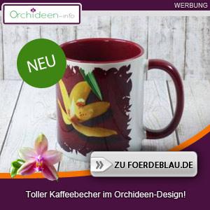 Roter Kaffeebecher im Orchideen-Design