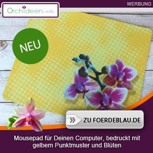 Gelbes Orchideen Mousepad mit Punkten
